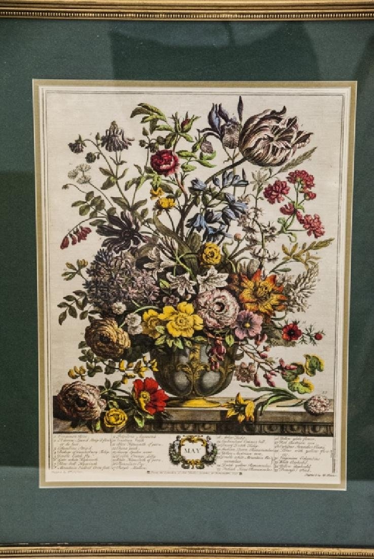 Two H. Fletcher Botanical Engraving Prints Framed - 5
