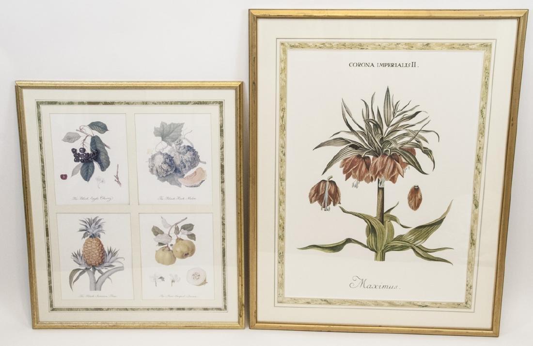 Pair Framed & Matted Botanical Prints