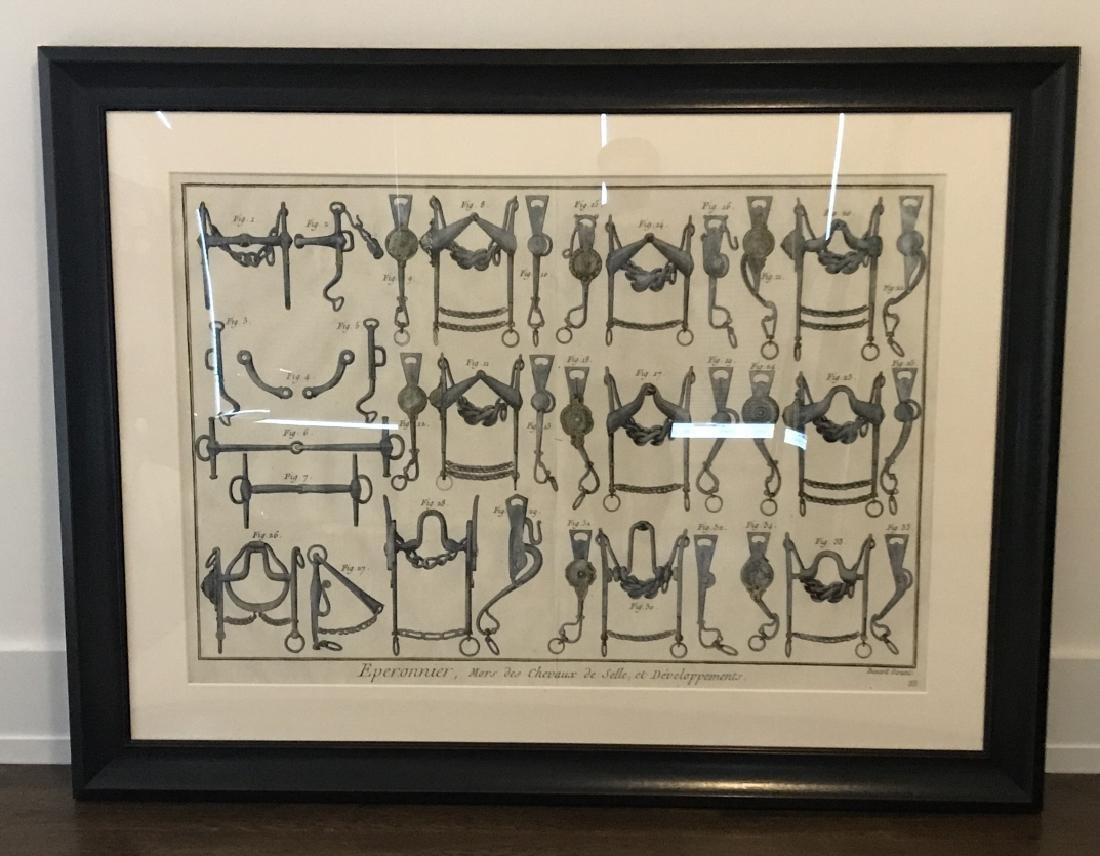 Equestrian Bridle / Equipment Print Framed