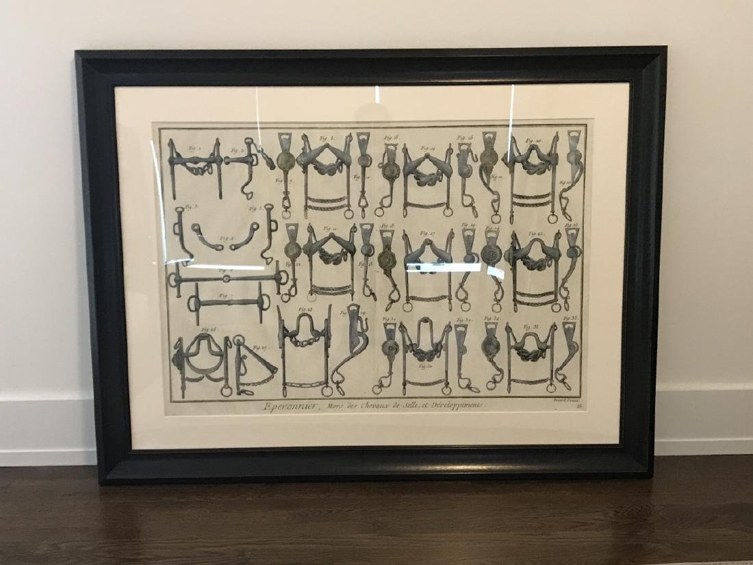 Equestrian Bridle / Equipment Print Framed - 2