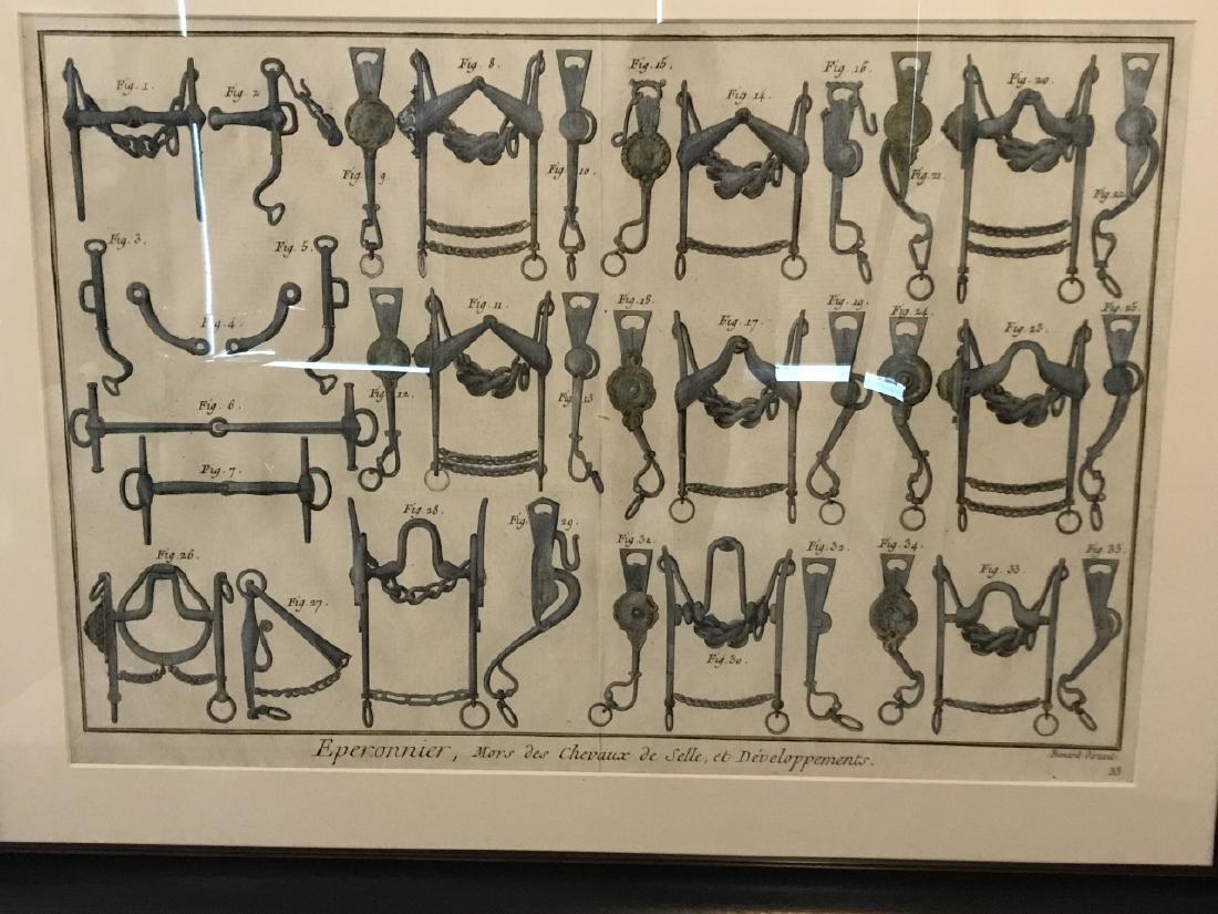 Equestrian Bridle / Equipment Print Framed - 3