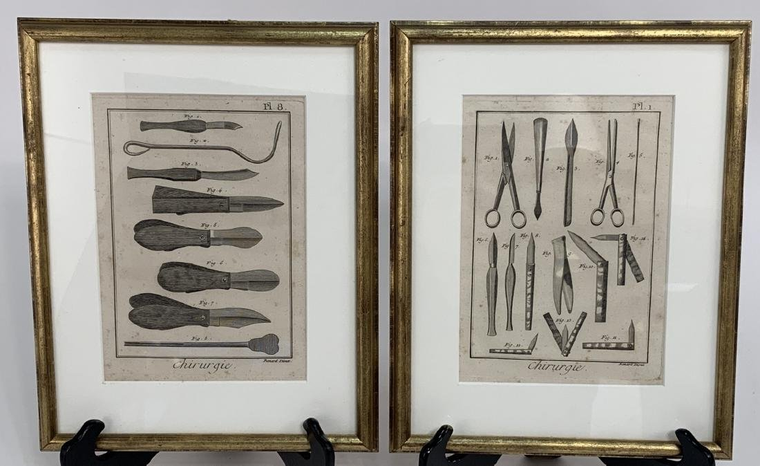 Pair Antique French Surgical / Medical Engravings