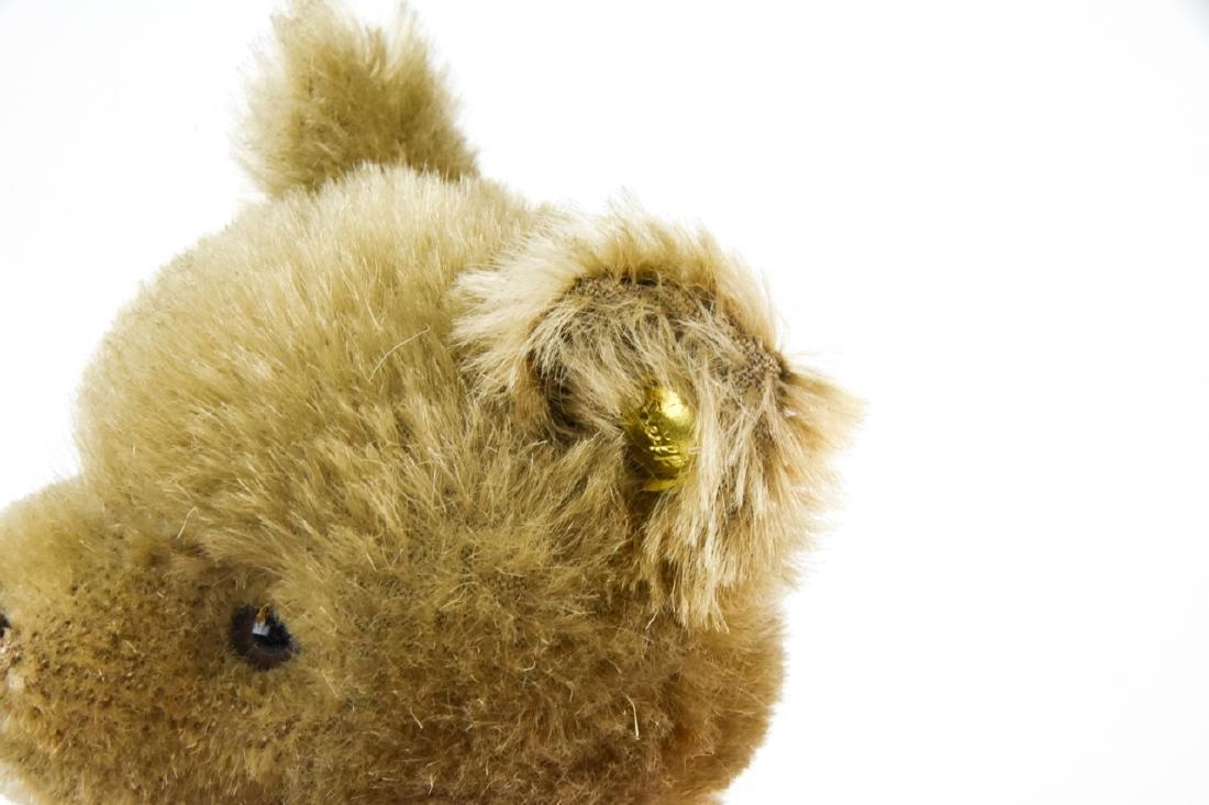 Vintage German Steiff Mohair Teddy Bear w Button - 7