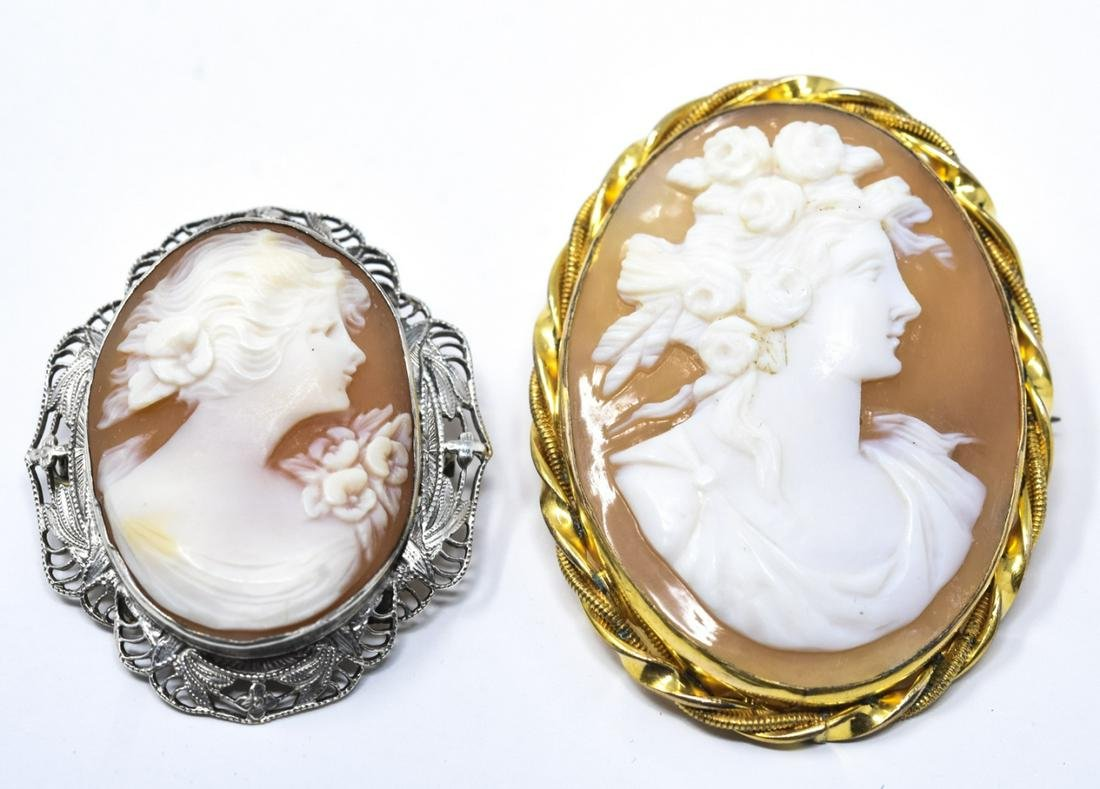 Two Vintage Natural Hand Carved Shell Cameo Pins