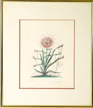 Salvador Dali Signed Color Lithograph Flowers