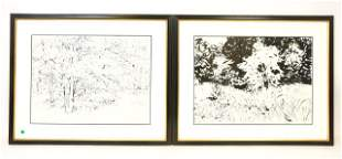 Two Framed Carl Ashley Abstract Ink Paper Drawings