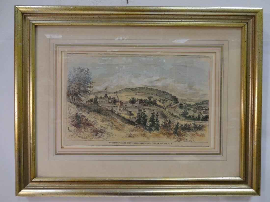 19th Century Hand-Colored Brewster, NY Lithograph