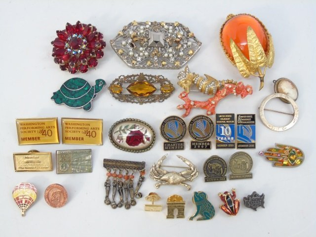 Assorted Vintage Costume Jewelry Pins & Brooches