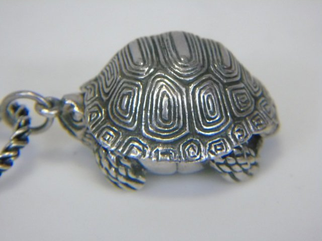 Sterling Silver Turtle Pill Box Locket Necklace - 3