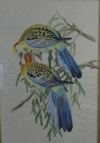 Antique Hand-Painted Watercolor Pair Birds Framed - 2