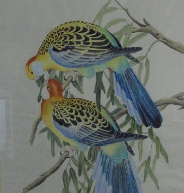 Antique Hand-Painted Watercolor Pair Birds Framed - 3