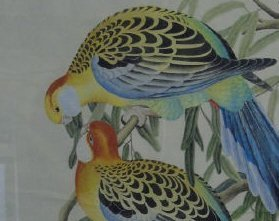Antique Hand-Painted Watercolor Pair Birds Framed - 4
