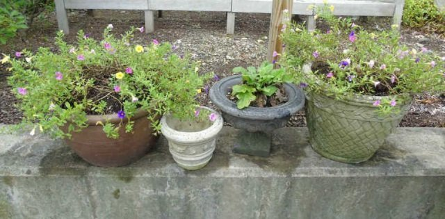Group of Assorted Vintage Garden Planter Pots