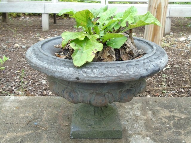 Group of Assorted Vintage Garden Planter Pots - 2