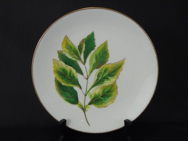 Antique Hand Painted Mintons Botanical Plates - 4