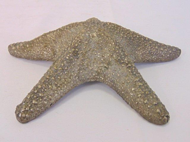Bronze Starfish Statue or Paperweight