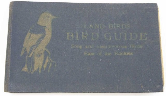 Antique Ornithological Book Land Birds Bird Guide