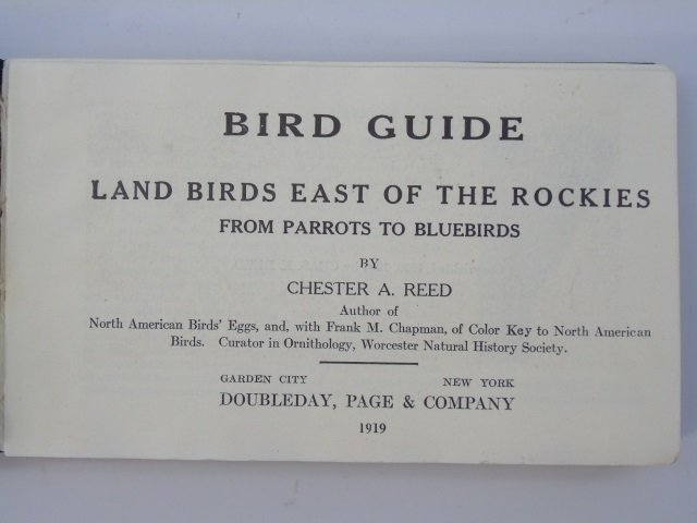 Antique Ornithological Book Land Birds Bird Guide - 2