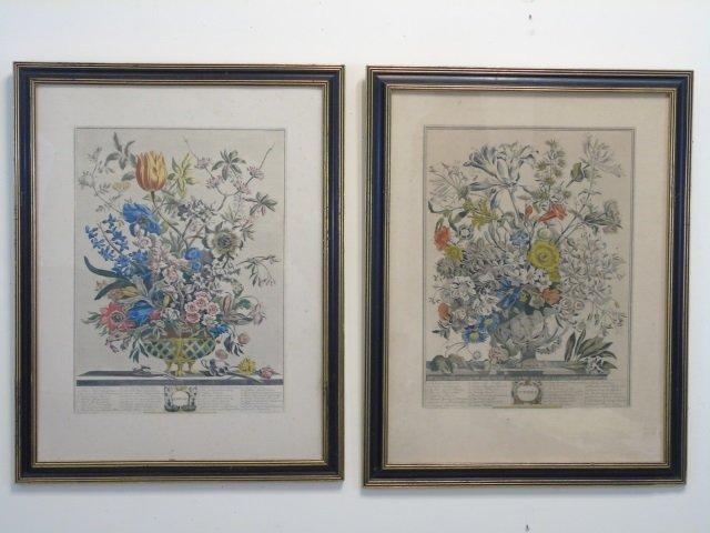 Pair Framed Vintage Color Lithograph Botanicals
