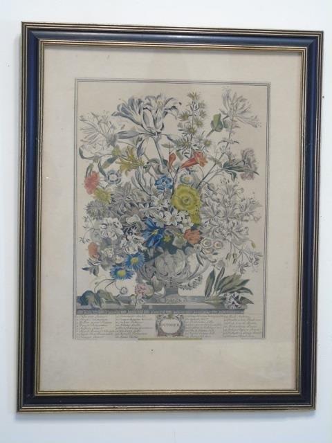 Pair Framed Vintage Color Lithograph Botanicals - 2