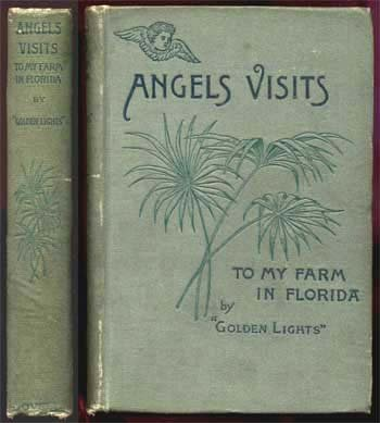 Angels' Visits to My Farm In Florida