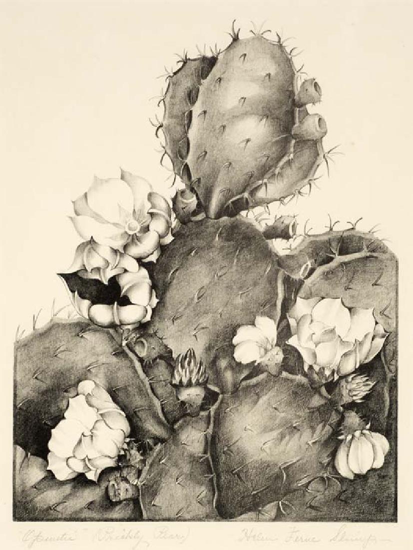 Helen Slimp (Am. 1890-1995), Oputia (Prickly Pear),