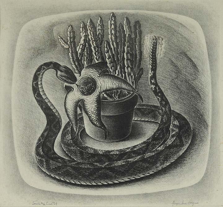 22: Snake & Cactus