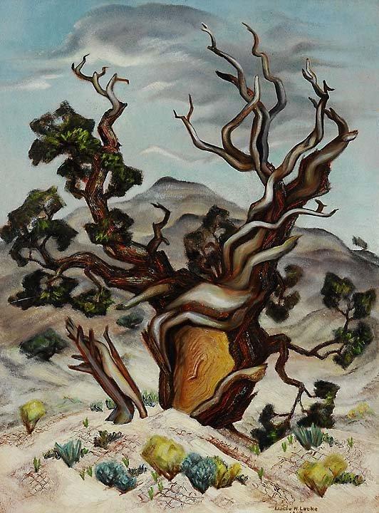 187: Cinderland Cedar, 1943