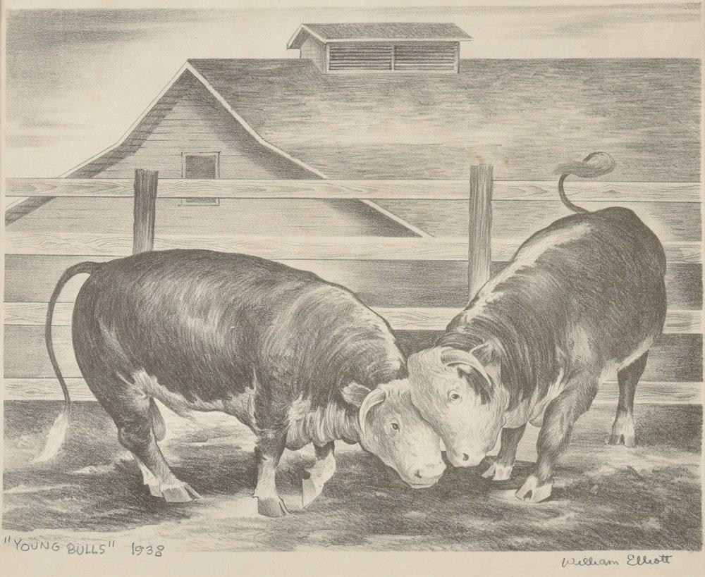 William Elliott, Young Bulls, 1938, lithograph