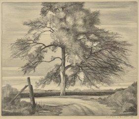 William Elliott, Tree, 1938, pencil