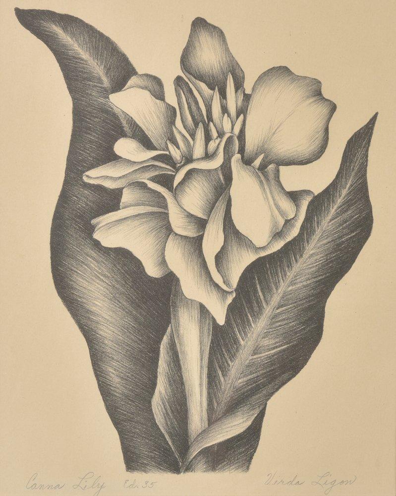 Verda  Ligon, Calla Lily, Ed. 35, lithograph