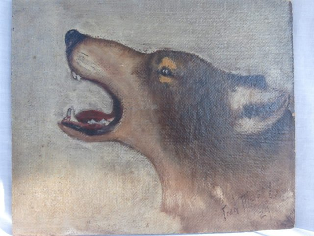 Famous Sports illustrator sketch of a wolf - 2