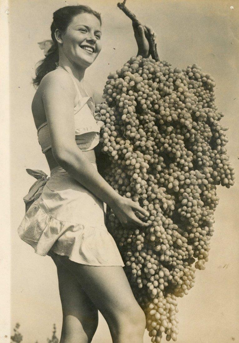 Silver Gelatin Mrs Vintage Wine PinUp, California 1948