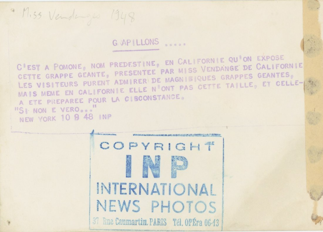 Silver Gelatin Mrs Vintage Wine PinUp, California 1948 - 2