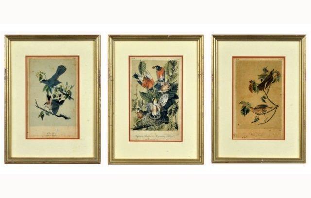 John James Audubon (American, 1785-1851)