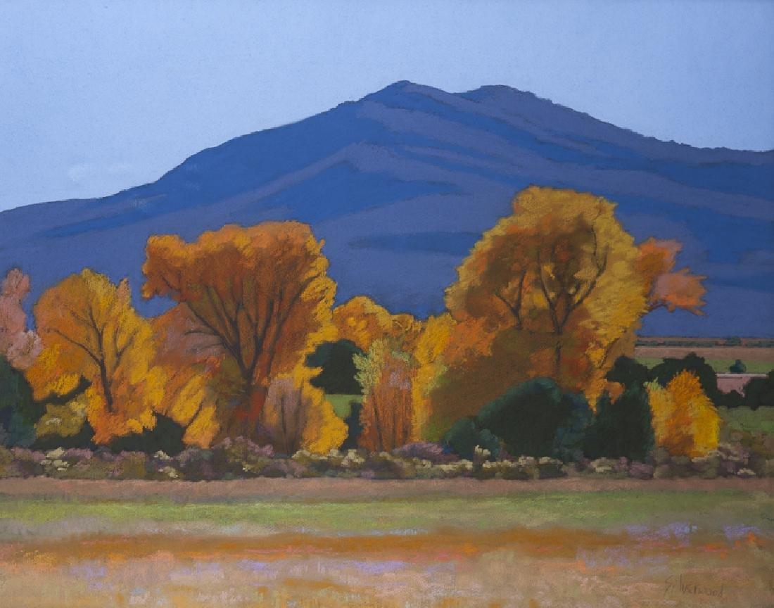 Mary Silverwood (1932 - 2011 New Mexico)
