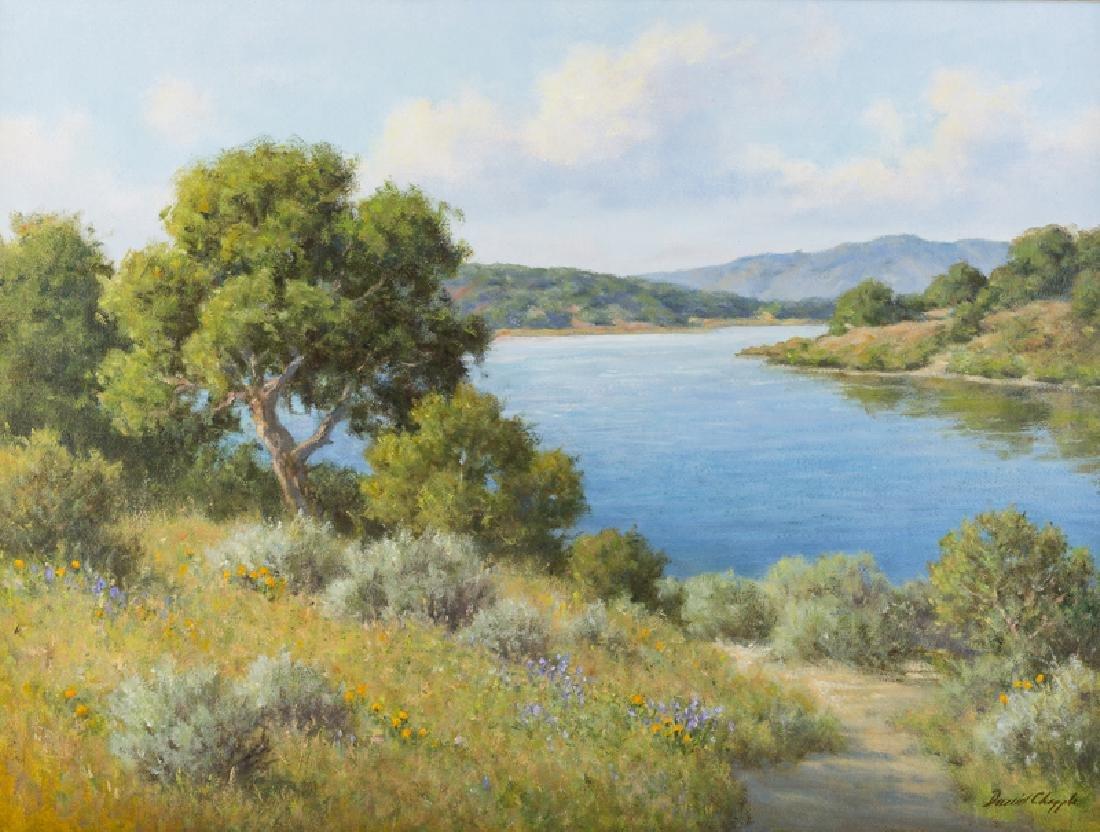 David Chapple (1947 - * California)