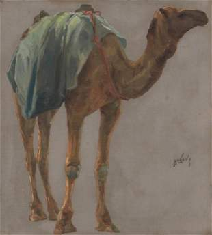 Portrait of a camel in profile
