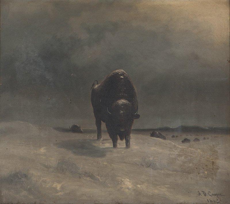 Astley David Middleton Cooper (1856-1924 San Jose, CA)