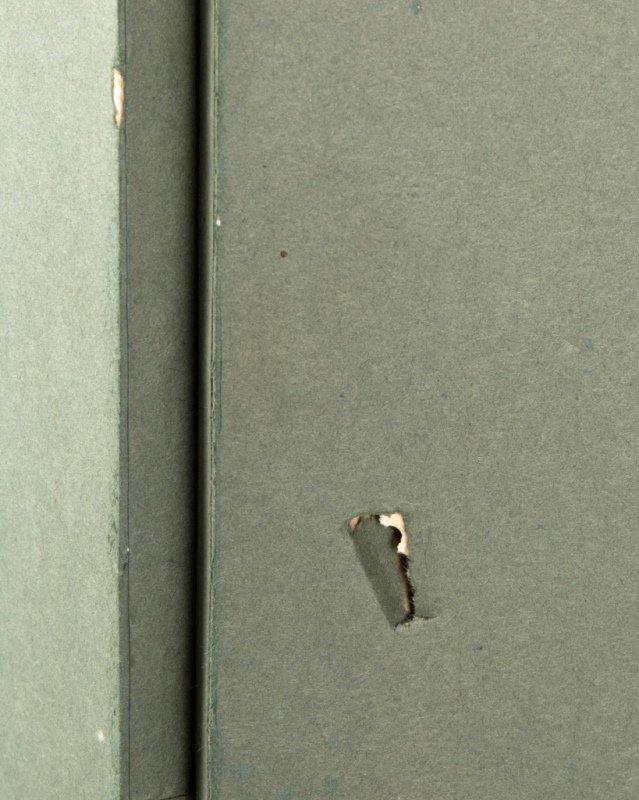 A Japanese two-panel folding byobu floor screen - 7