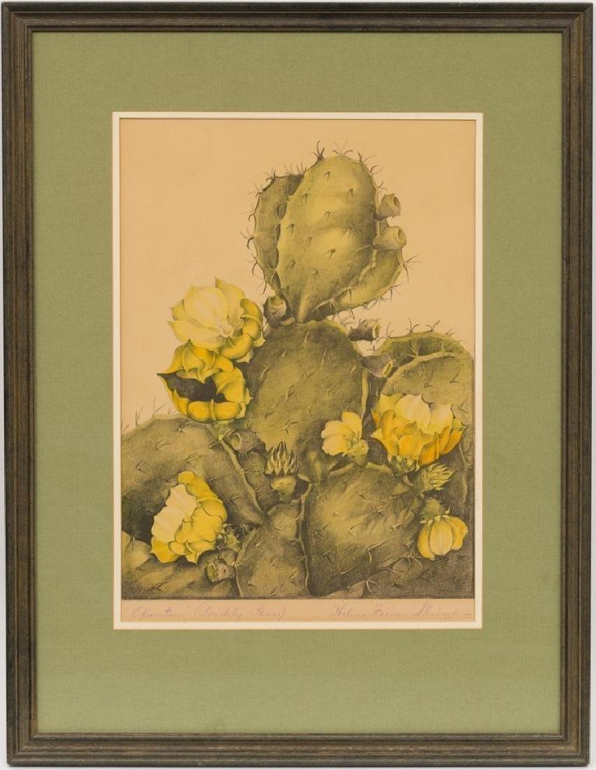 Helen Ferne Slimp (1890-1995), Blooming Cactus, - 2
