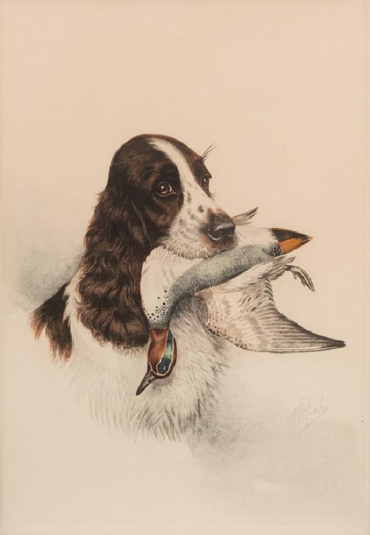 """Boris Riab (1898-1975), """"Cocker Spaniel"""", c. 1945,"""