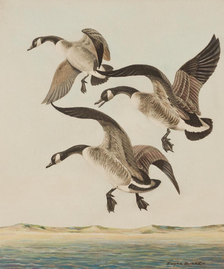 "Edgar Burke (1889-1950),  ""Canada Geese"", Colored"