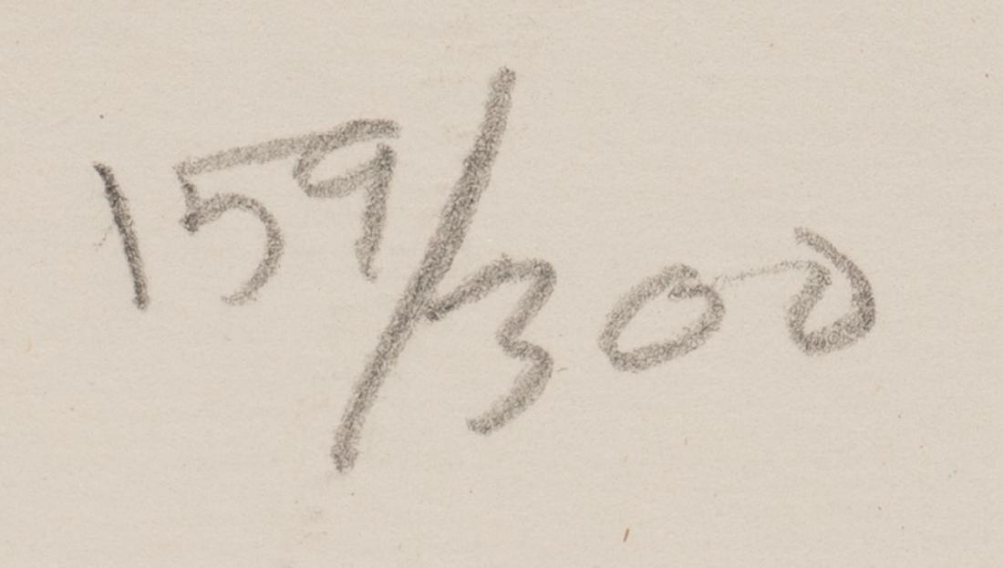 "Jasper Johns, ""Flag (Moratorium)"", 1969, 159/300 - 3"