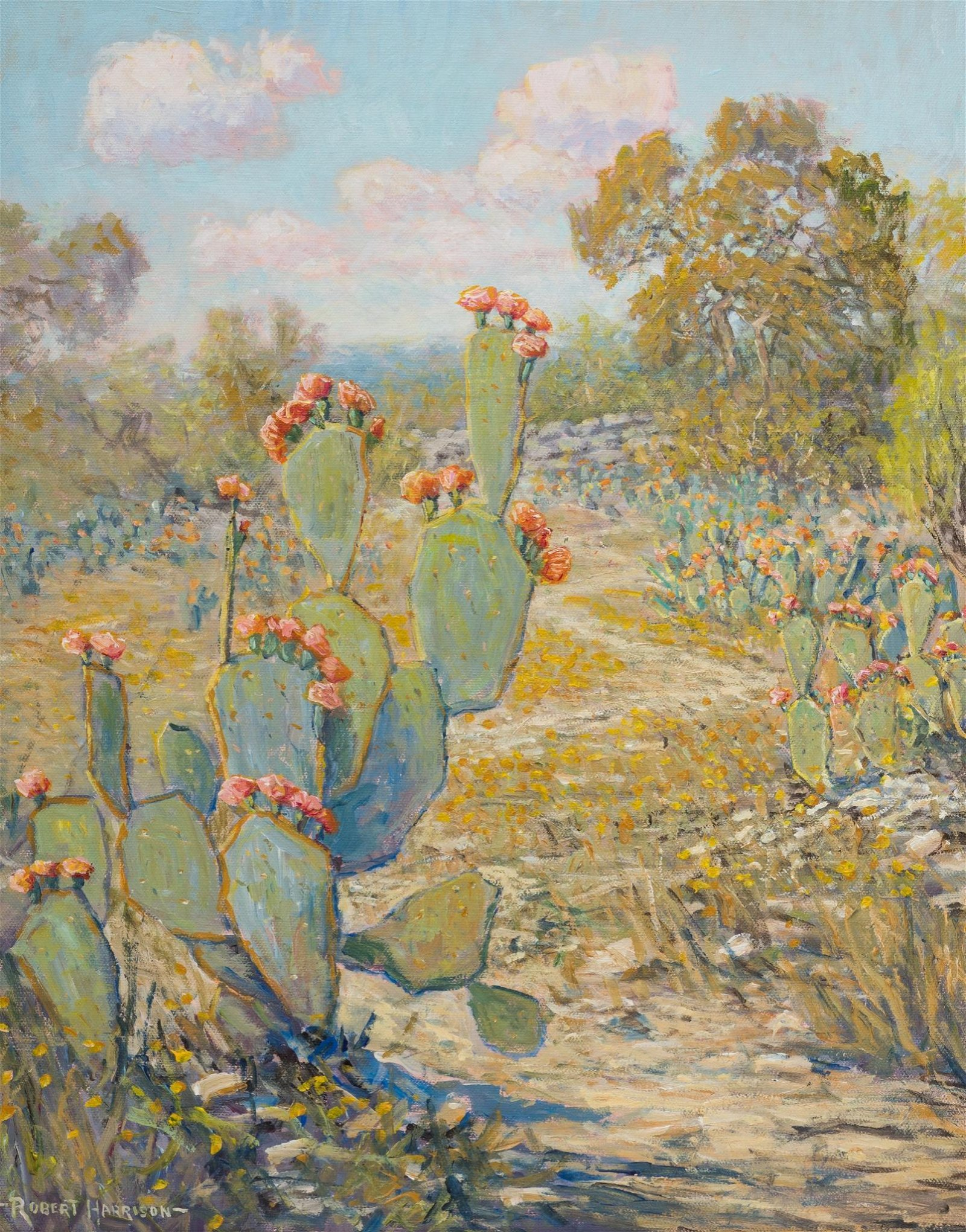 "Robert Harrison (b. 1949), ""Mas Cactus"", oil on canvas,"