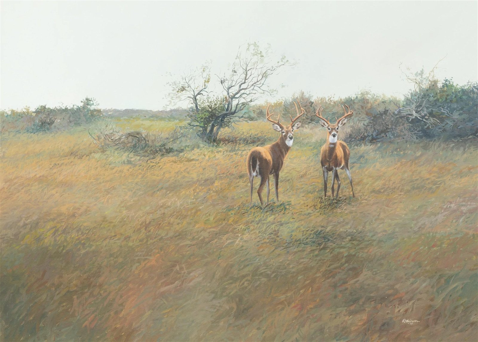 James Robinson (1944-2015), White Tail Deer, 1974,