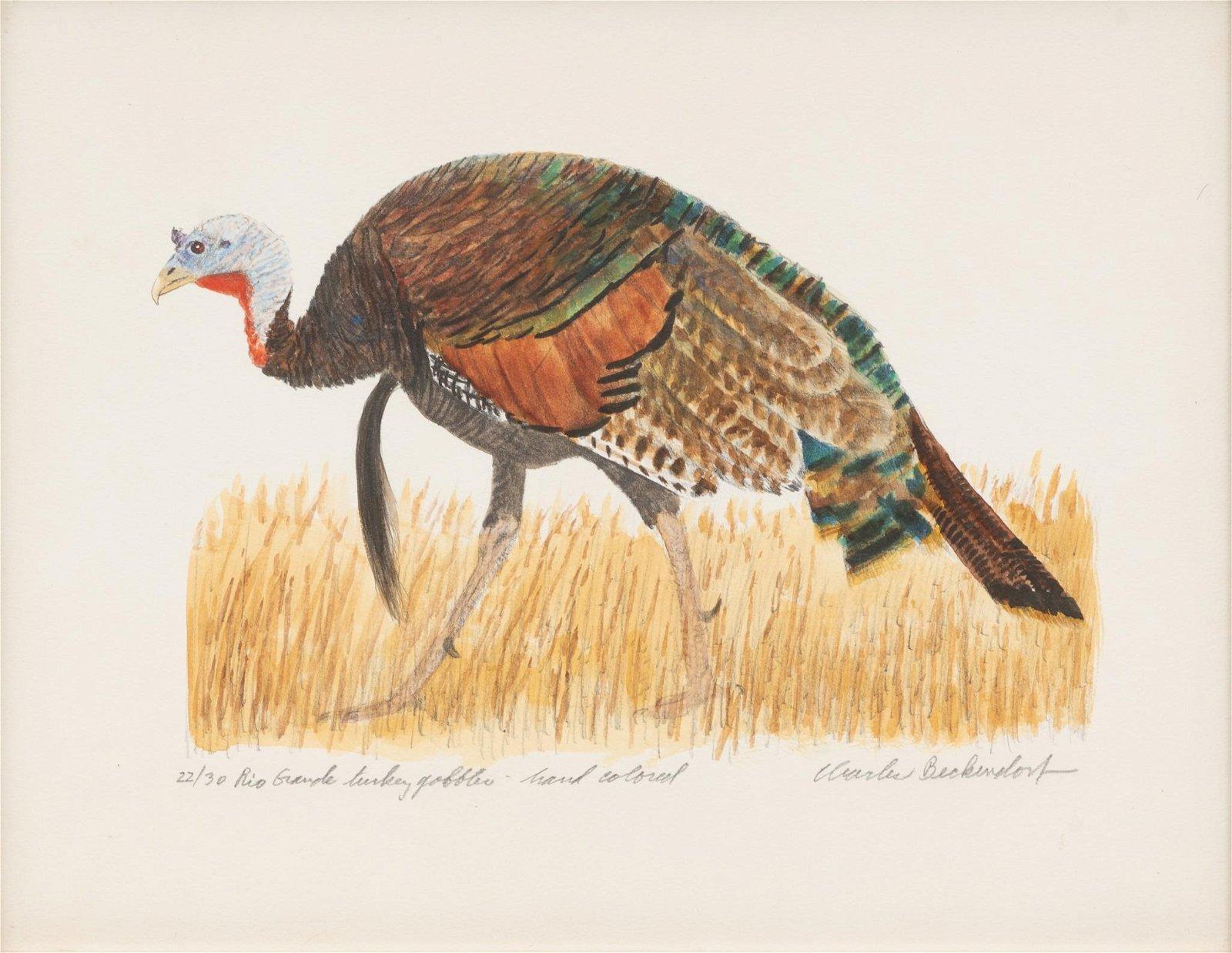 """Charles Beckendorf (1930-1996), """"Rio Grande Turkey"""","""