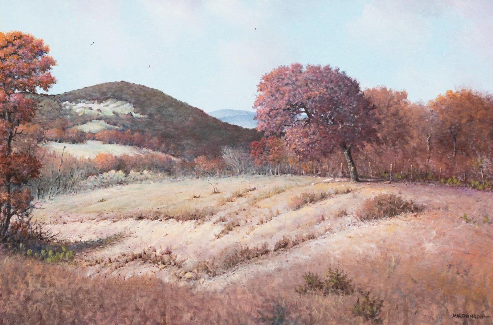 Daniel Maldonado (d. 2019), Fall in the Hill Country