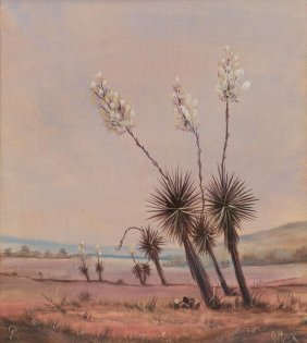 """Kelly Debusk, """"yucca Plant"""", Oil On Canvas"""