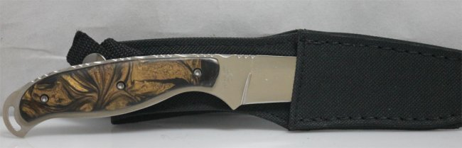 """COLLECTORS EDITION 8.5"""" MAXAM FIXED BLADE HUNTING KNIFE"""